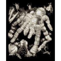 Set gavura fosforescent Tarantula