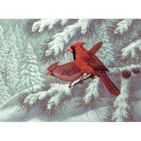 PAL32---Cardinals