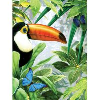 PJS53 - Jungle Toucan