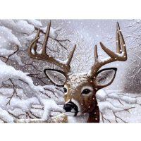 Set-pictura-pe-numere,-Royal-Langnickel,-35---Dancing-Snow