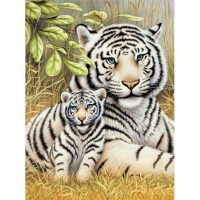 Set-pictura-pe-numere,-Royal-Langnickel,-76-–-White-Tiger-Pair