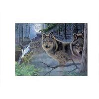 Set-pictura-pe-numere-adulti,-Royal-Langnickel,-39---Mystical-Moonlight-1