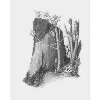 Set-schite,-Royal-Langnickel,-09-–-Tree-Stump