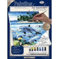 dolphin-island-painting-by-numbers-small-canvas