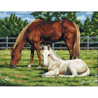horses-in-field-painting-by-numbers-large-canvas1
