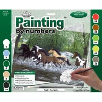 paint-by-numbers-adult-lge-free-spirits2