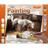 paint-by-numbers-adult-lge-new-friends2