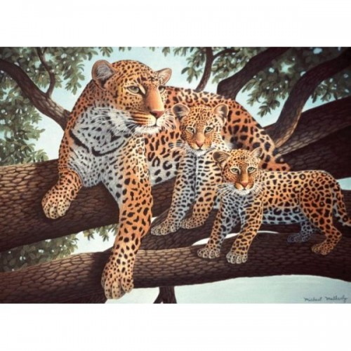 paint-by-numbers-jun-lge-african-leopards-and-cubs