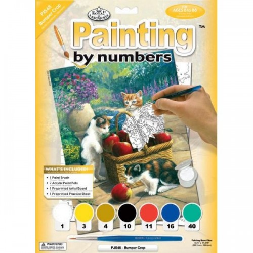 paint-by-numbers-jun-sm-bumper-crop2