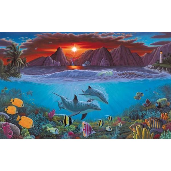 pal20 ocean life magazinul artistilor