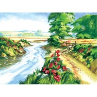 painting-by-number-adult-large-poppy-field