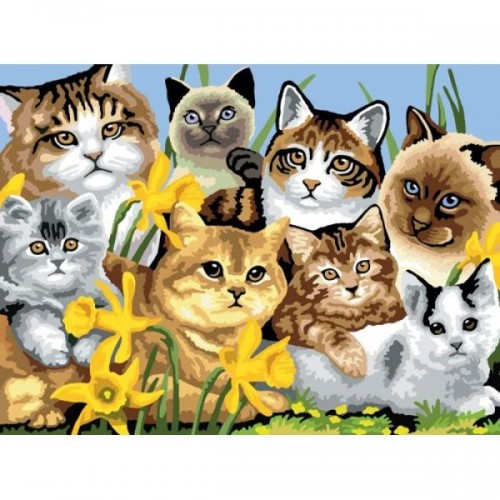 painting-by-number-junior-large-cats-montage