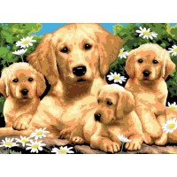 painting-by-number-junior-large-golden-retriever