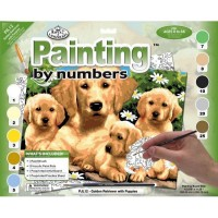 painting-by-number-junior-large-golden-retriever2