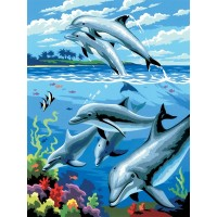 painting-by-number-junior-small-dolphins