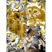 Pictura pe numere copii Kittens Daisies