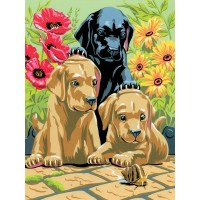 painting-by-number-junior-small-labrador-puppies