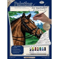 thoroughbred-painting-by-numbers-small-canvas