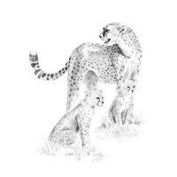 Set-schite,-Royal-Langnickel,-15-–-Cheetah-&-Cub