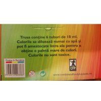 Set Combinatul Fondului Plastic Goase 6x18ml pentru uz scolar