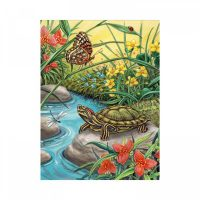 Set pictura pe numere, Royal Langnickel, 91 - Turtle